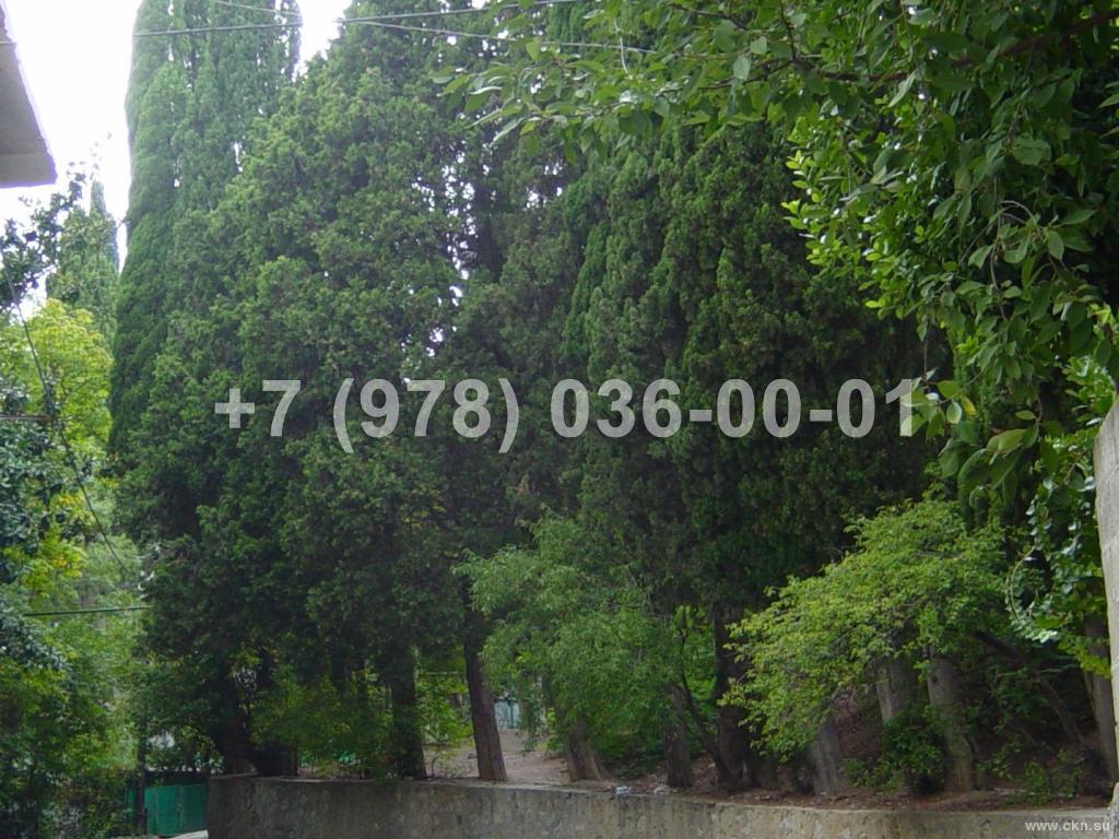 №1677 дом 40 м<sup>2</sup><br /> участок 5 сот.